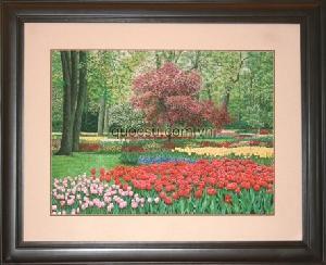 Công viên Hà Lan 3 - PA-092