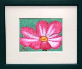 Hoa bướm đại - FL-012