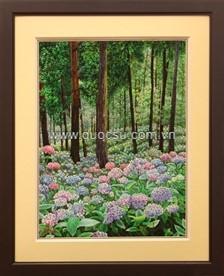 Vườn hoa cẩm tú cầu - PA-164