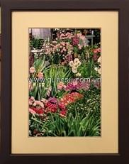 Vườn hoa nhiều màu - PA-174